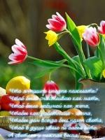 pozdrav-s-8-marta-2