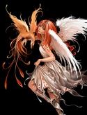 angel-14