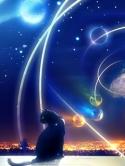 cosmos-12
