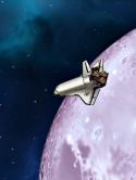 cosmos-22