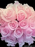 flower-24