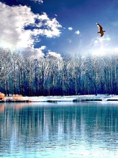Прикольные картинки на аву с природой