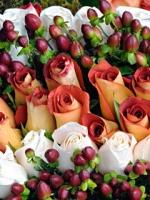 vesennie-cvety-10