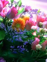 vesennie-cvety-2