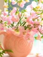 vesennie-cvety-6