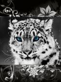 animals-32