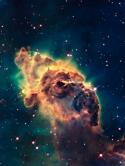 cosmos-3